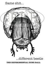 dung beetle research joke