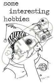 some interesting hobbies